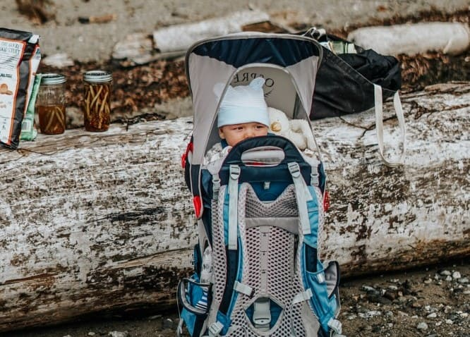 The Best Baby Carriers for Travel 2020