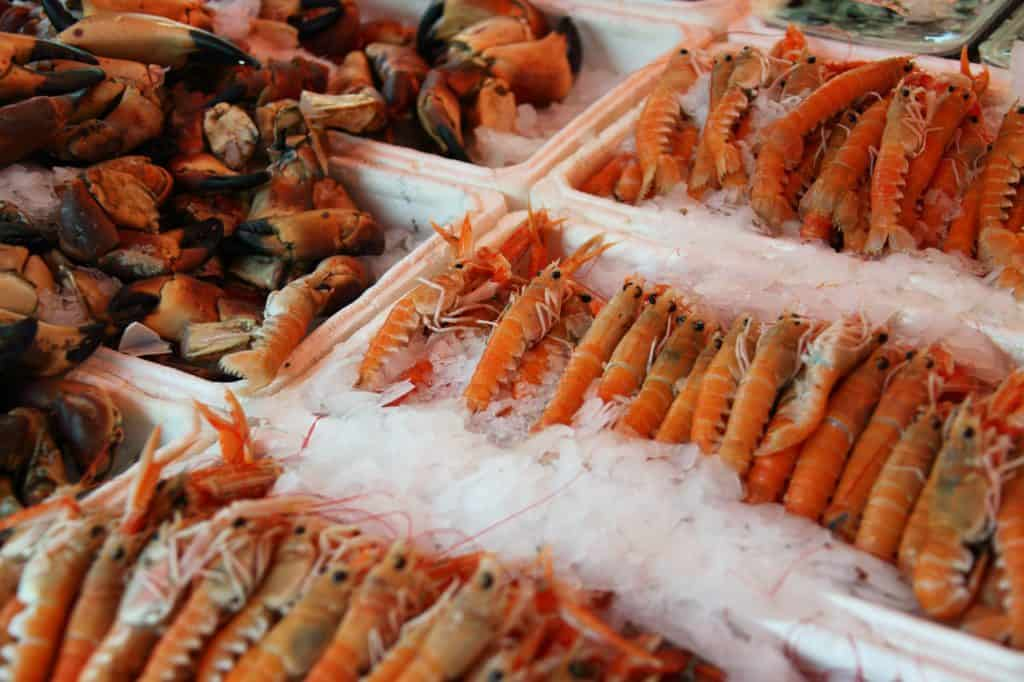 image of fresh seafood. trying it is one of the best things to do in Alghero