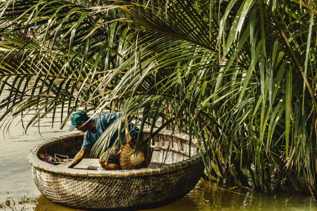 traditional conicle fishing boat in the reeds. Riding one is a great thing to do in Hoi An with kids