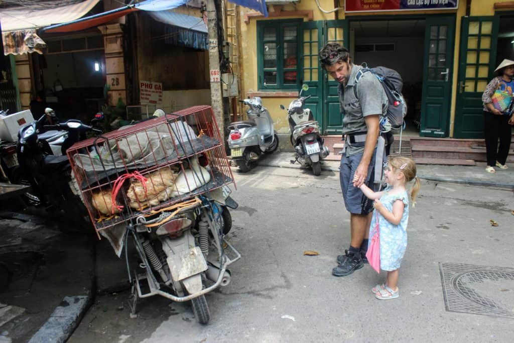 Man in Vietnam with kids looks at chicken on a motorbike